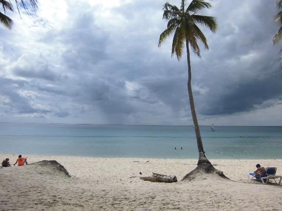كاتالونيا لا رومانا - أول إنكلوسيف: spiaggia 