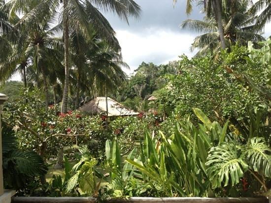 Villa Semana : depaysement absolu et complete relaxation