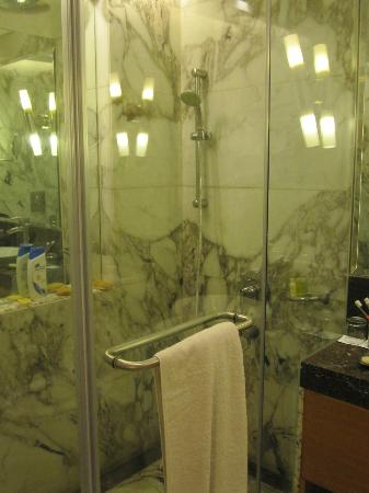 Radisson Blu Marina Connaught Place: bathroom