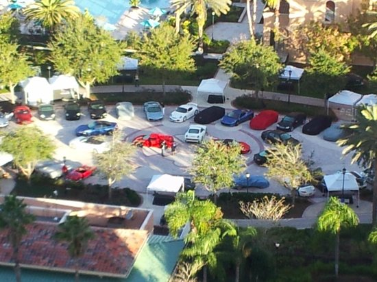 Exotic Car Show Picture Of JW Marriott Orlando Grande Lakes - Car show in orlando this weekend