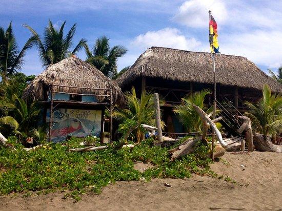 Playa Las Penitas: Coco Surf School