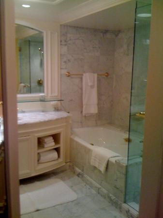 Grand America Hotel : Spacious bath, beautifully designed.