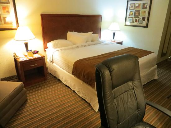 SureStay Plus Hotel by Best Western St. Louis Airport : Bedroom (and desk chair)