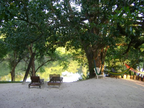 Black Orchid Resort : Belize River