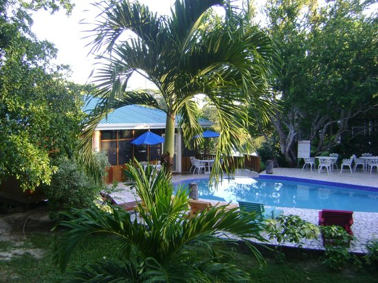 Black Orchid Resort: Pool and Lounge