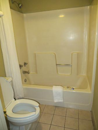 Americas Best Value Inn-St. Louis / Downtown: Bathroom