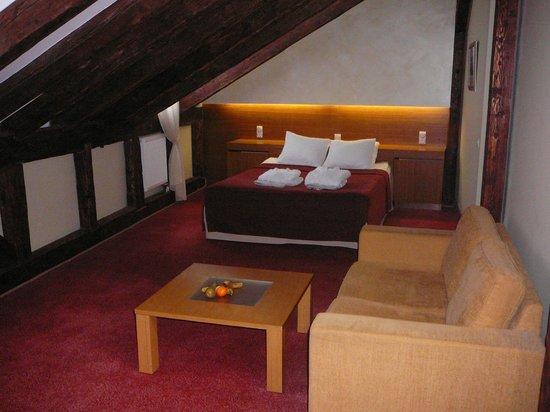 Hotel Bern: God plass med koselig skråtak i rom 303