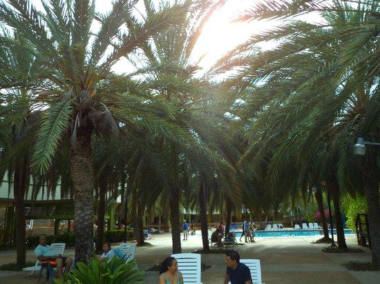 Dunes Hotel Beach Resort Naturaleza Por Donde Quier