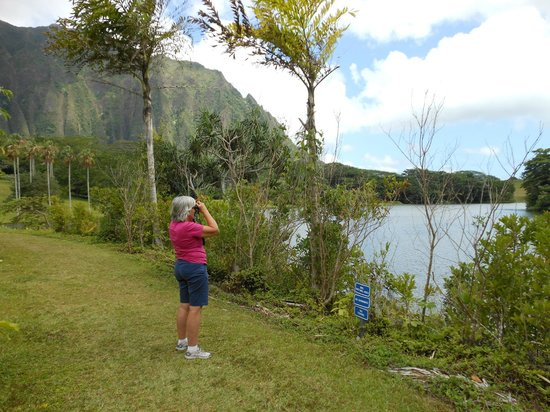 Hoomaluhia Botanical Gardens : Birdwatching