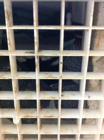 Rodeway Inn South Miami - Coral Gables: air vent with mold