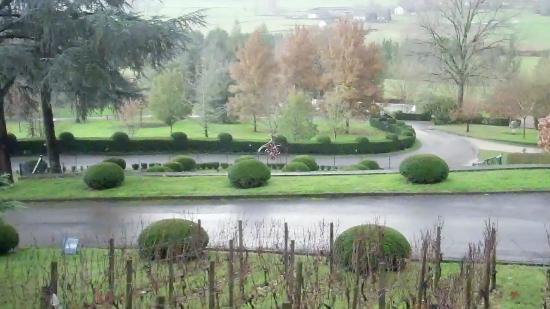 Chateau de Castel-Novel : Parc vu du Chateau
