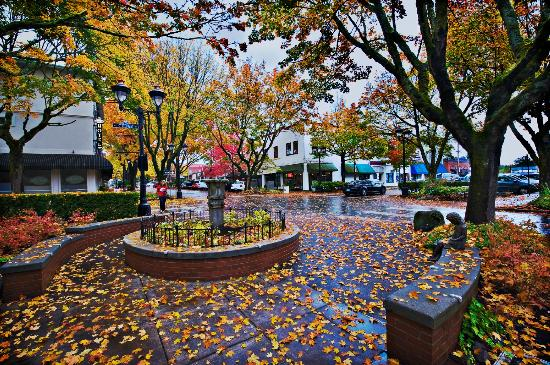 Camas Hotel: Downtown Camas is lovely in Autumn.