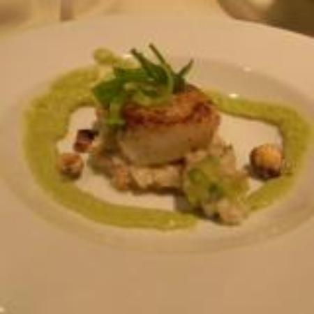 Camas Hotel: Scallop small plate at Harvest. Delicious!