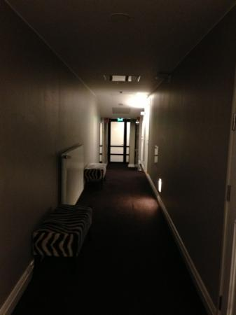 Fabian Hotel: 廊下