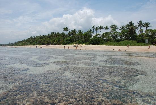 Quarta Praia Beach: Quarta Praia III