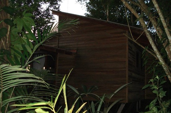 Ian Anderson's Caves Branch Jungle Lodge: river view treehouse