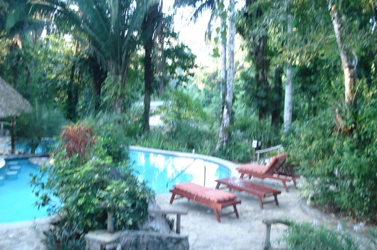 Ian Anderson's Caves Branch Jungle Lodge: relaxing pool area