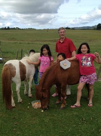 Pakinui Farmstay and B&B: uncle Rex with the children on their morning ritual of feeding their favourite animals!