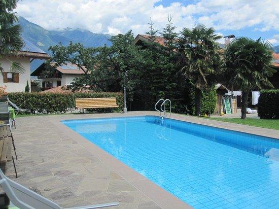 Oberschererhof: Pool