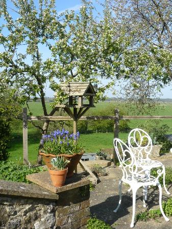 The Thatched House Country B&B: Garden looking towards Wildbrooks
