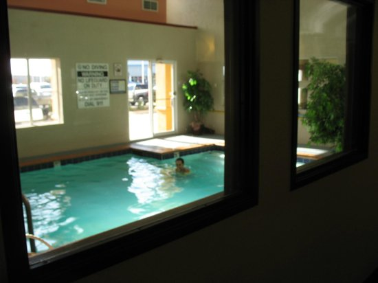 Best Western Plus Rockwall Inn & Suites: Indoor Pool and Whirlpool