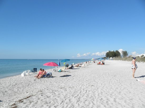 Sanibel Siesta on the Beach: the condo beach