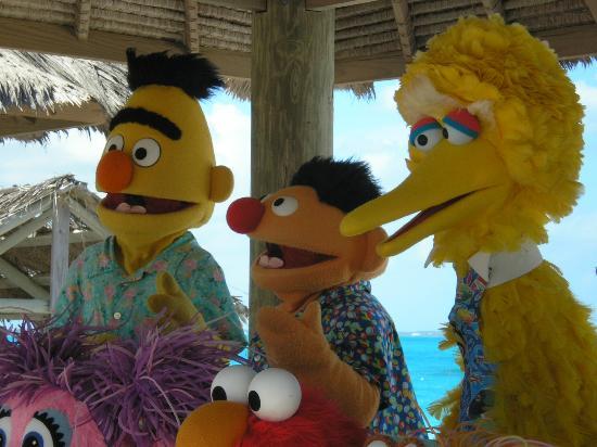Beaches Turks & Caicos Resort Villages & Spa: Bert, Ernie & Big Bird at the photo shoot