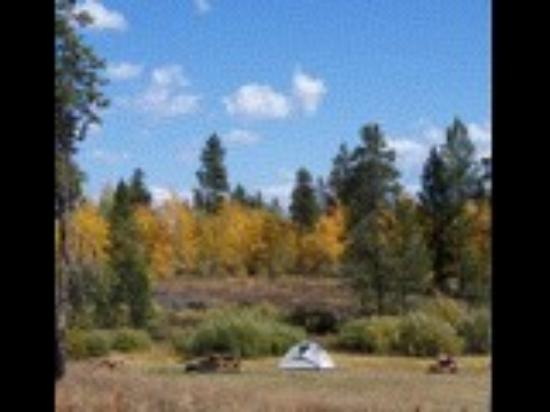 Buffalo Run Campground: RV Park in the Fall