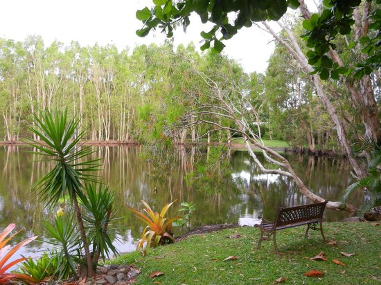 Billabong Bed & Breakfast: A small lake in the garden