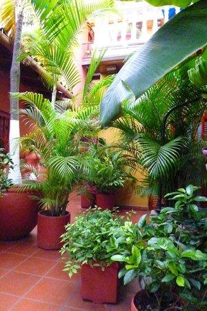 Hotel 3 Banderas: FRENTE A NUESTRA HABITACION
