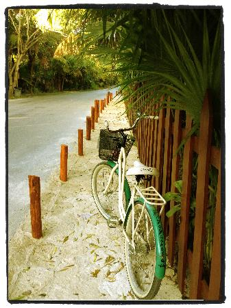 Yoga Shala Tulum: out for a bike ride!