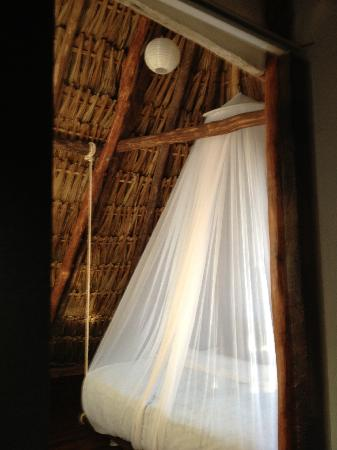 Yoga Shala Tulum : loved my room,,i stayed an extra night!