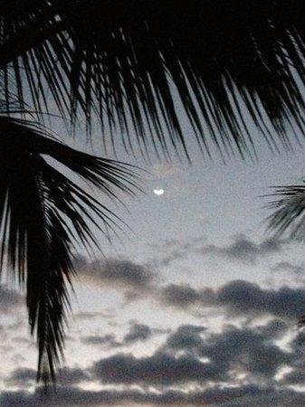 Monterey del Mar Hotel: noche de luna...