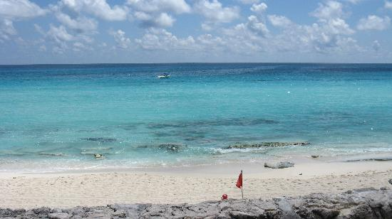 Bsea Cancun Plaza: What a view!