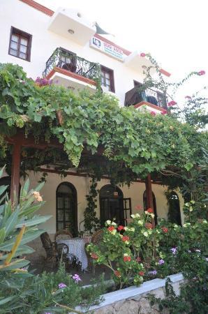 Sevgi Hotel: hotel