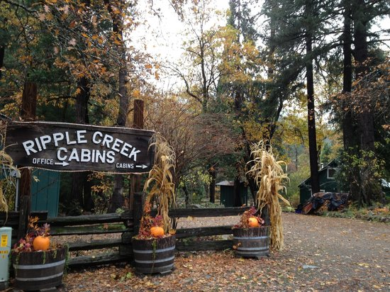 Ripple Creek Cabins: Entrance