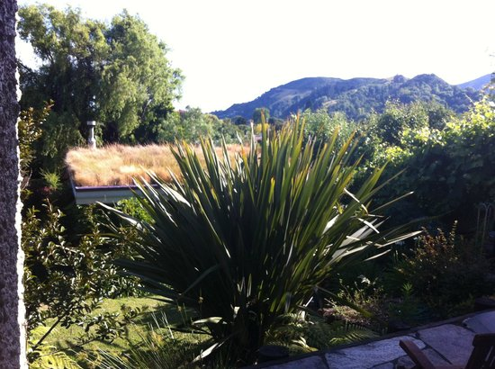 Joya Garden & Villa Studios: View from outside room
