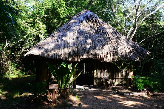 duPlooy's Jungle Lodge: A Mayan Hut in the Botanical Garden.