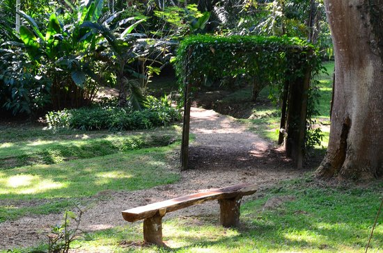 duPlooy's Jungle Lodge: Peaceful walks.