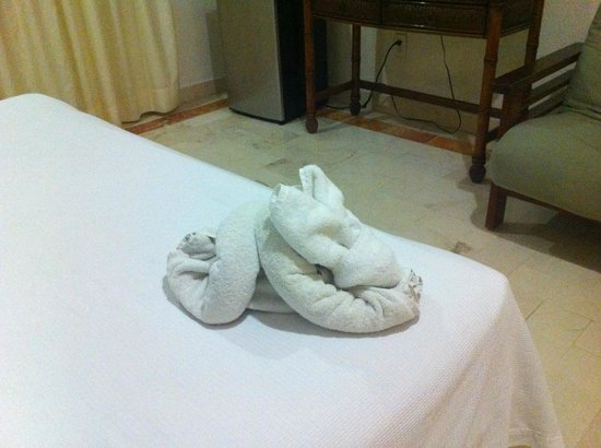 Illusion Boutique Hotel by Xperience Hotels: Cuuute rabbit ahhhh! Made my day after the Chichen Itza 12hr tour