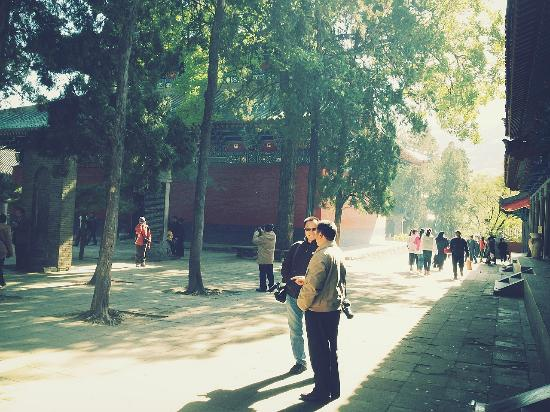 Shaolin Temple: happy tourist during the week