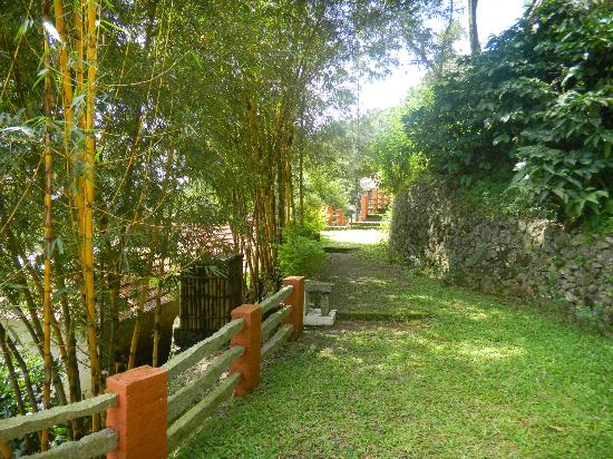 Paradisa Plantation Retreat: Path leading to the cottage
