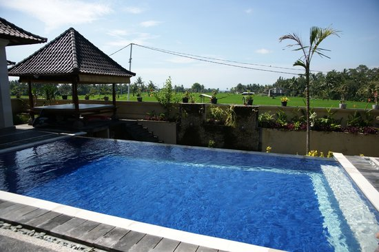 Villa Agung Khalia: Private pool