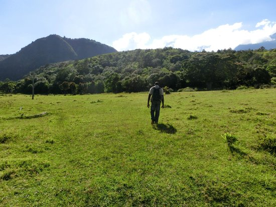 Hatari Lodge: Mount Meru