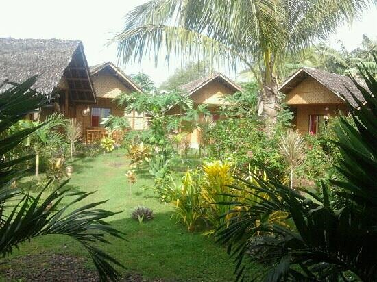 Reggae Guesthouse: the bungalows