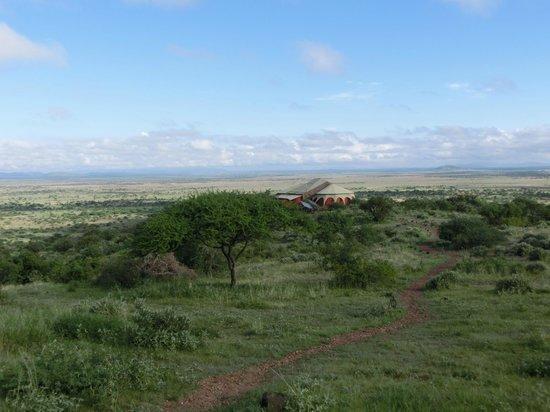 Shu'mata Camp: Blick
