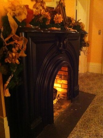 Schenck Mansion Bed & Breakfast Inn: firelight