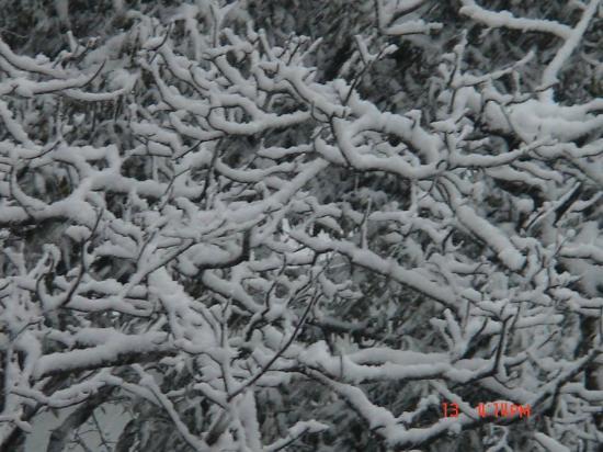Hotel Jain Regency: Snow