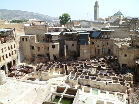 Dar el Yasmine: Tannery in Fes