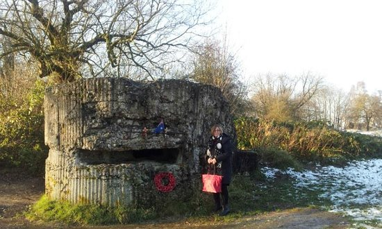 Remains of German bunker, Hill 60, Ieper (Ypres)